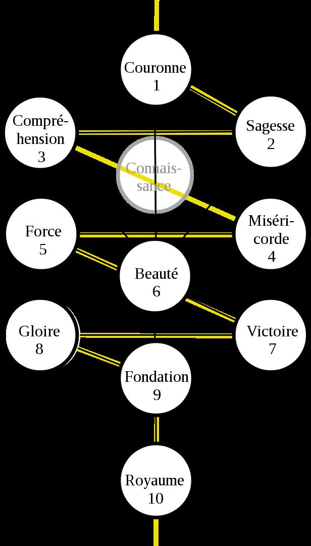 massage vibratoire arbre de vie